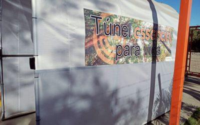 Túnel Essencial para Vida reforça higienização na CTR ESSENCIAL
