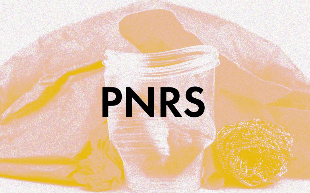 PNRS: o que é isso?